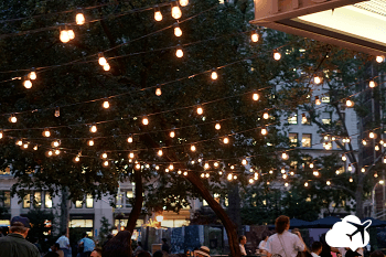 madison square garden nyc à noite